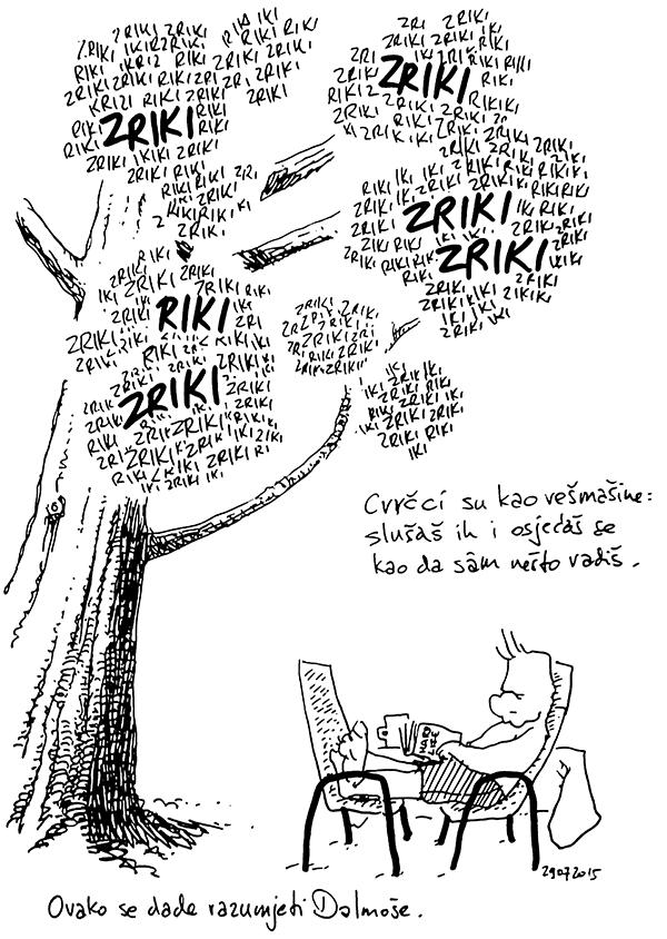 Zriki